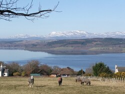 Looking across the Beauly Firt