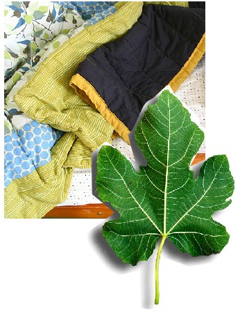 Comfort blanket and fig leaf